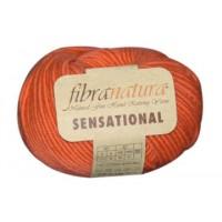 Fibra Natura Sensetional (100% Шерсть Мериносовая, 50гр/83м)