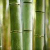 Пряжа Бамбук